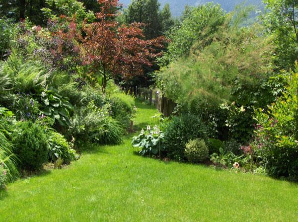 Parti comuni in condominio il giardino condominio for Condominio giardino c